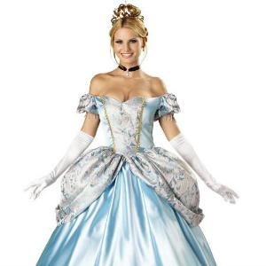 Cinderella Halloween Costume 2014